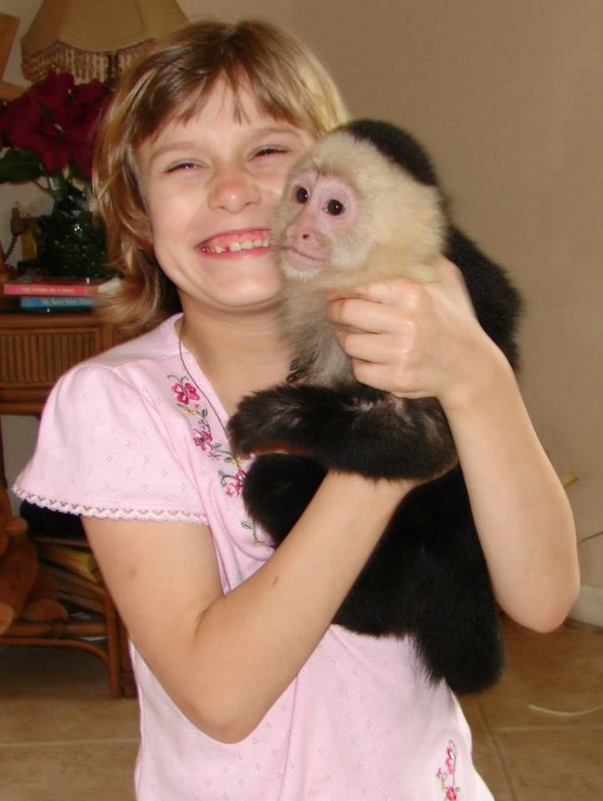 Well Trained Baby Capuchin monkeys for adoption offer Exotic pets